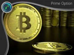 Брокеры ванильных валютных опционов