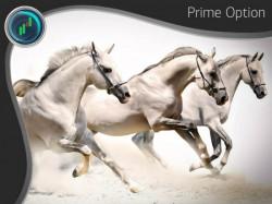 «Три белых коня» - стратегия для бинарных опционов